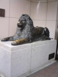 0506_lion